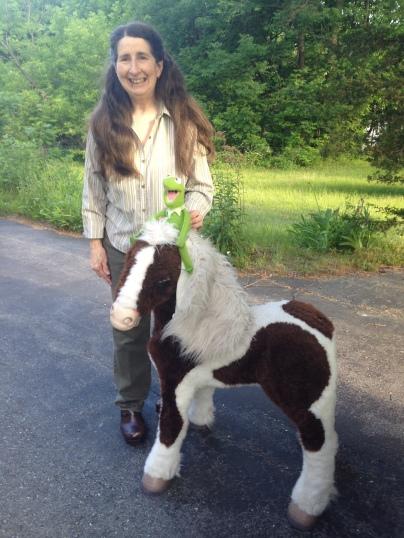 Pony ride in Gardner